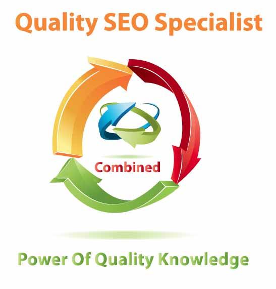 Quality seo specialist