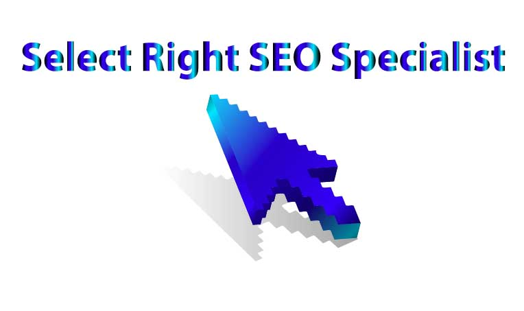 select right seo specialist