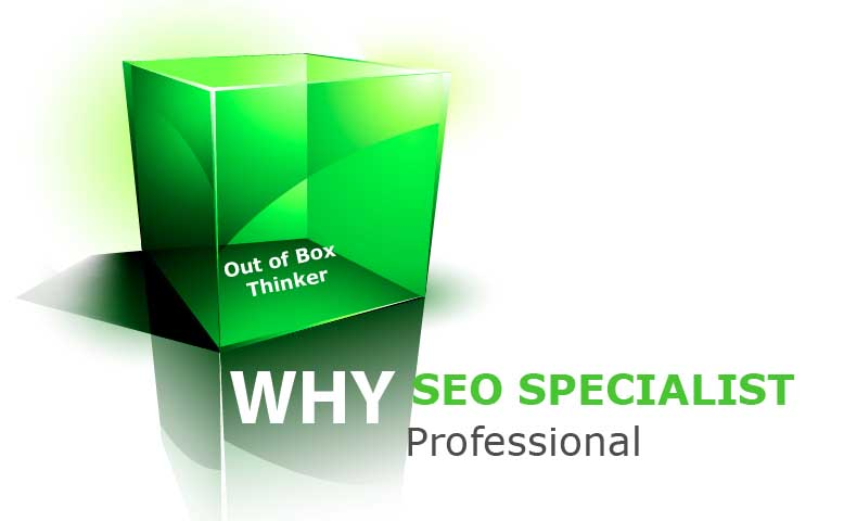 why seo specialist professional
