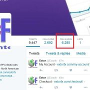 Extorfx-Real-Twitter-followers